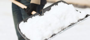 Read more about the article A Look at Snow Shovels
