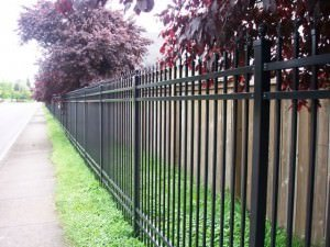tall iron fence