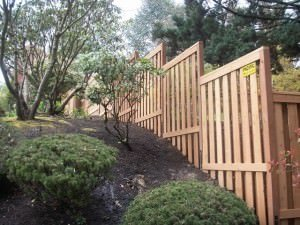 wooden fence on hill