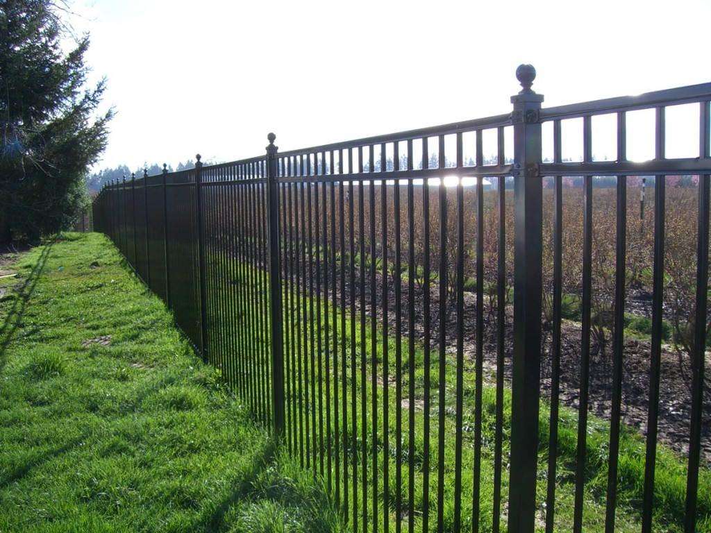 Pictures of Installed Ornamental Fences Portland, Oregon