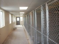 chain link fences for kennels
