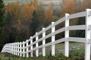 White Fence During Autumn
