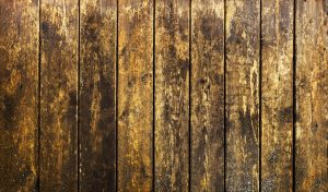 a grimy wooden fence to illustrate cleaning a wood fence without pressure washing