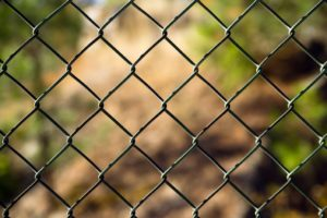 An ordinary chain link fence section frames a wooded scene to illustrate fence inspection time