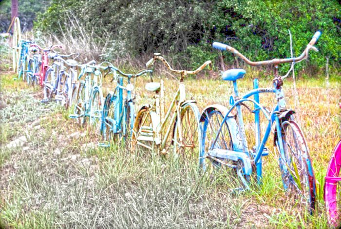 bikes-in-a-field-fence