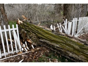 Damaged old wooden fence from storm