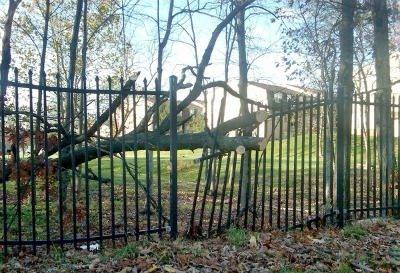Damaged Fence 4