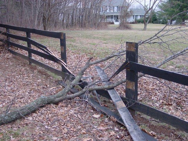 Damaged Fence 5