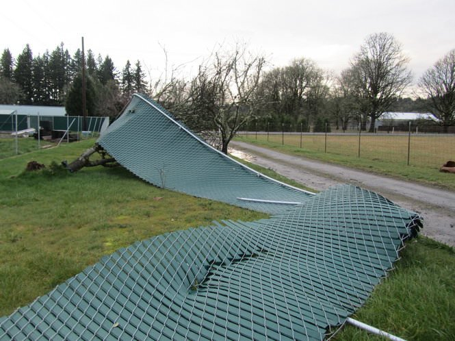 Damaged Fence 6