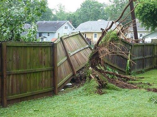 Damaged Fence 8