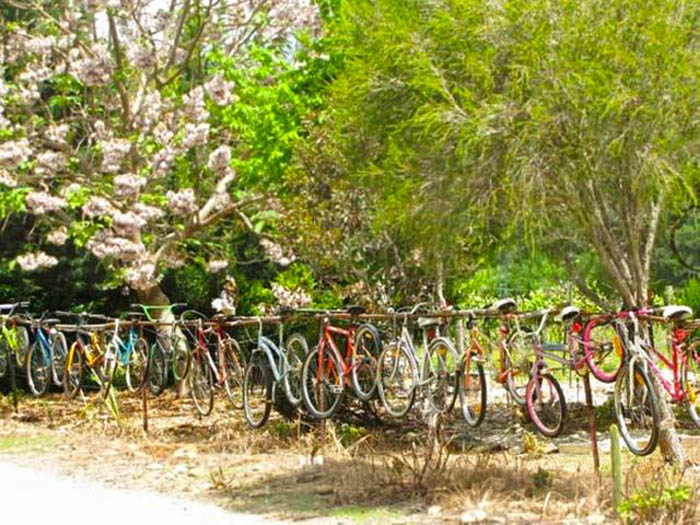 hanging-bikes