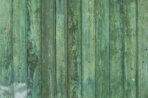 Read more about the article Cleaning Mold And Moss Off Your Fence