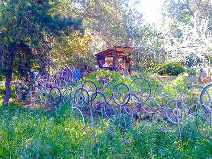 purple-bike-wheels-fence