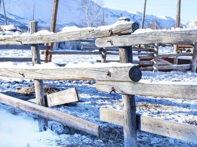 A damaged split rail wood fence is seen in a snowy winter landscape.