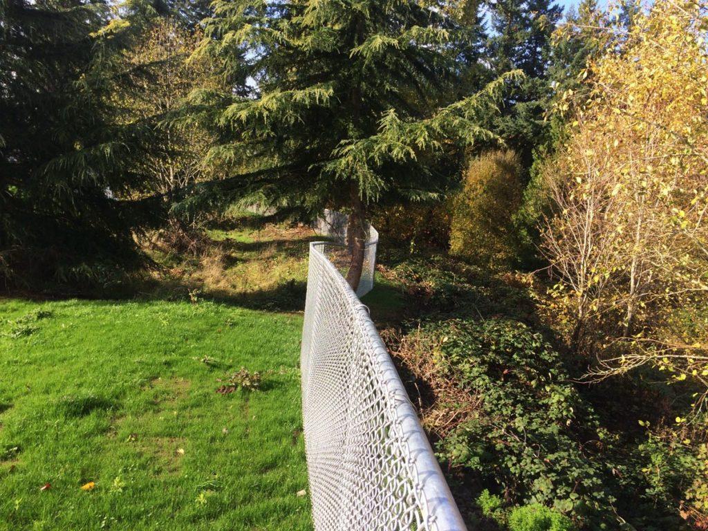 chain-link-fence-swerve.jpg