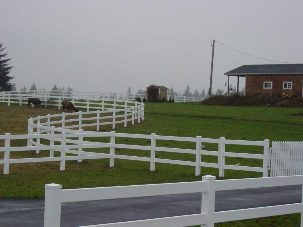 fences-94.jpg