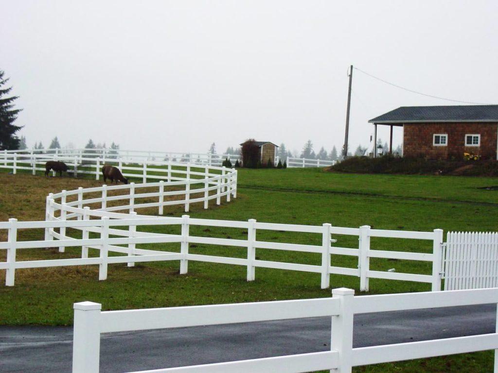 fences-942.jpg