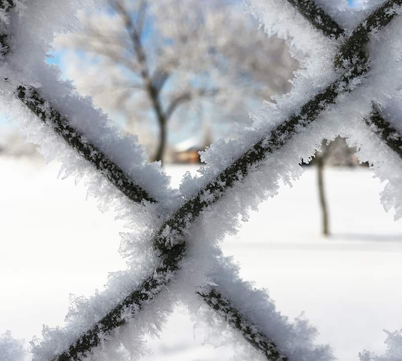 Read more about the article Preparing Your Fence and Yard For Winter